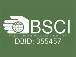 bsci-big